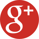 Google + ESG Executive Education