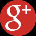 Google + ESG Executive Education