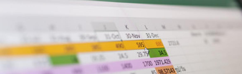Microsoft Excel (Niveau débutant) + Certification TOSA