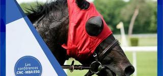conférence management coaching horse